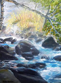 East Rosebud River by Patti Gordon