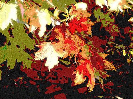 Fall Leaves in the Wind by Diane Paulhamus