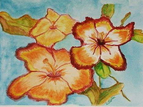 Fiery Hibiscus by Lynette Clayton