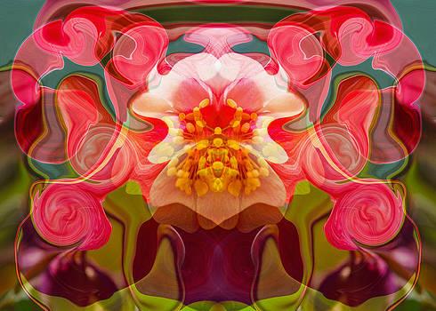 Omaste Witkowski - Flower Child