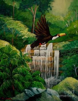 Flying tucan by Jean Pierre Bergoeing