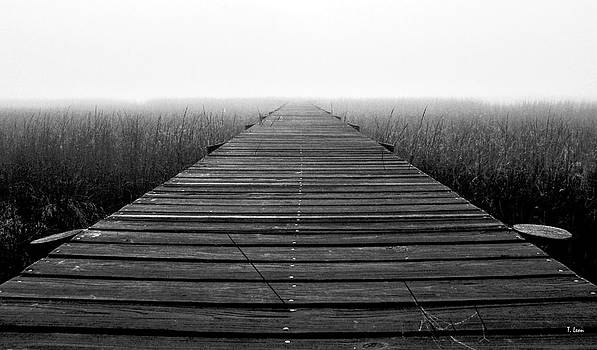 Foggy path by Thomas Leon