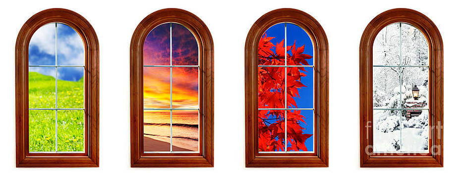 Jo Ann Snover - Four seasons