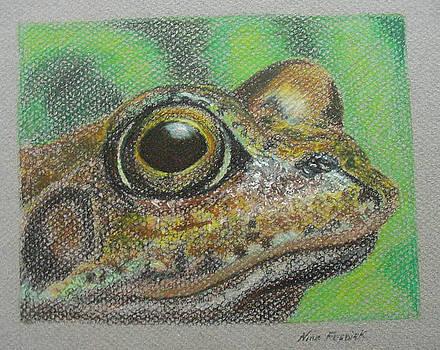 Nina Fosdick - Froggy