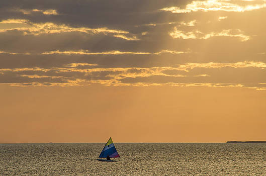 Golden Sail on Menemsha Bight by Steve Myrick