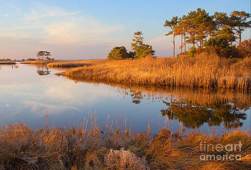 Gordons Pond by Robert Pilkington