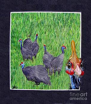 Guinea Fowl Hello there by Sylvie Heasman
