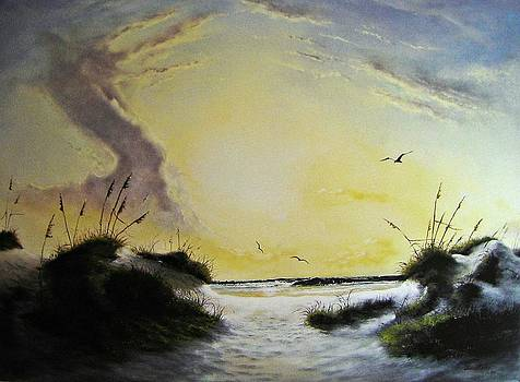 Gulf Shores by James Neeley