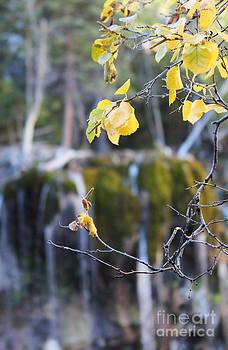 Kate Avery - Hanging Lake