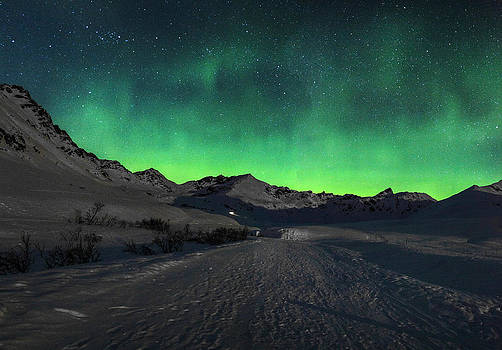 Hatchers Pass Aurora by Kyle Lavey