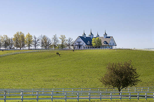 Jack R Perry - Horse Farm