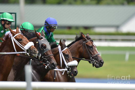 Horse Racing by Frederic BONNEAU Photography