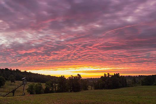 Hunting Dawn by Jonathan Grim