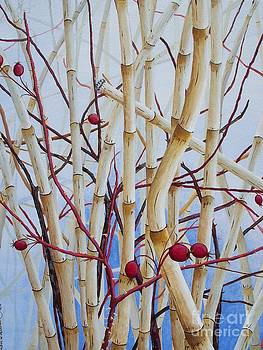 Iced Berries by Amber Whiting Bradley