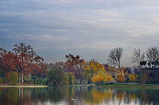 IOR Park  by Bajan Sorin