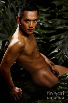 Jakob In The Jungles Of Bali by Brian Joseph