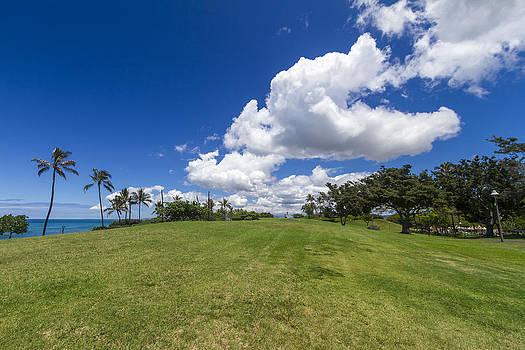 Kakaako waterfront park Oahu Hawaii by Jianghui Zhang