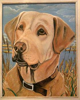 Lab Dog by Melissa Penny