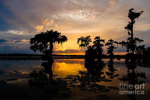 Lake Martin Sunset by Susie Hoffpauir