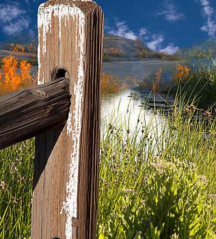 Gunter Nezhoda - landscape with fence pole