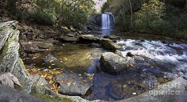 Looking Glass Falls North Carolina by Dustin K Ryan