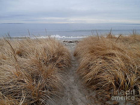 Looking Out To Sea by Eunice Miller