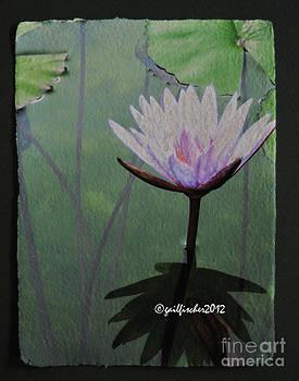 Lotus3 by Gail Fischer