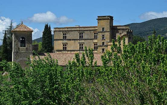 Lourmarin Castle by Dany Lison