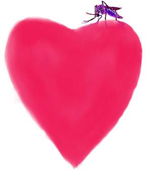 Love by Moshfegh Rakhsha