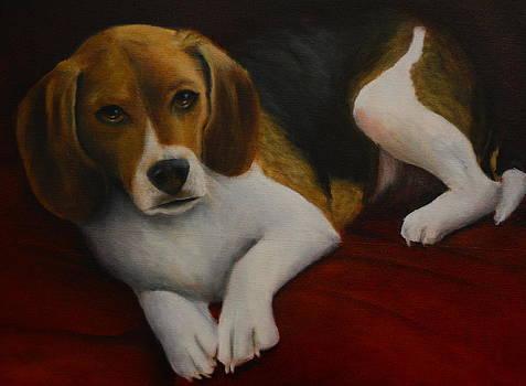 Lulu by Joan Glinert