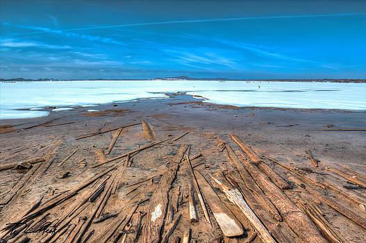 William Reek - Lumbertown Surfaces 1