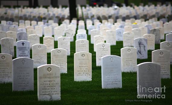Wayne Moran - Memorial Day Remembering Those Who Gave The Ultimate Sacrifice