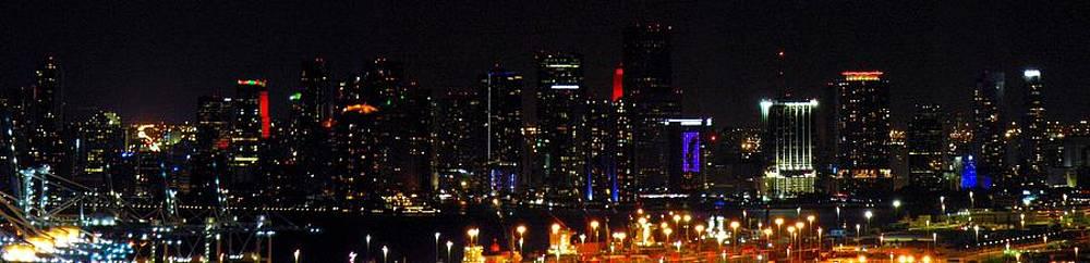 Miami Skyline by J Anthony