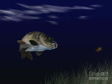 Mirror Carp 2 by Cynthia Adams