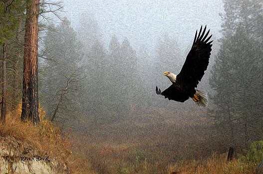 Misty Eagle by The Feathered Lady