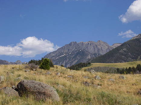 Montana Landscape by Yvette Pichette