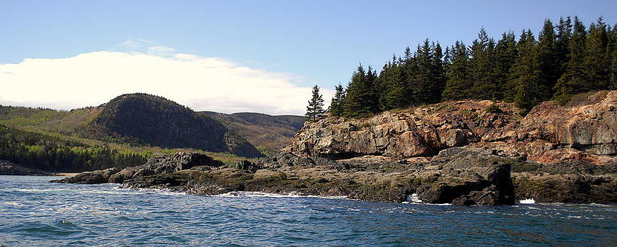 Mt Desert Island in Acadia National Park Maine by Rick Frost
