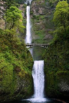 Multnomah Falls by Jaci Harmsen
