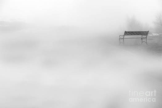 Mystic Bench by Julia Fine Art And Photography