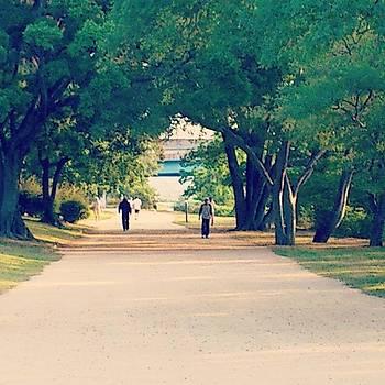 Jog by Yoshikazu Yamaguchi