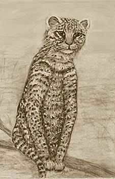 Ocelot Watching by Ave Hurley