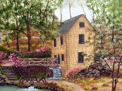 Old Mill North Little Rock Arkansas by Vivian Cook