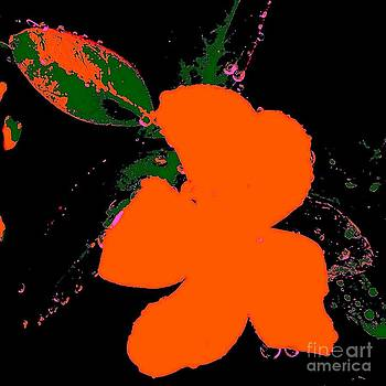 Orange Abstract by Eric  Schiabor