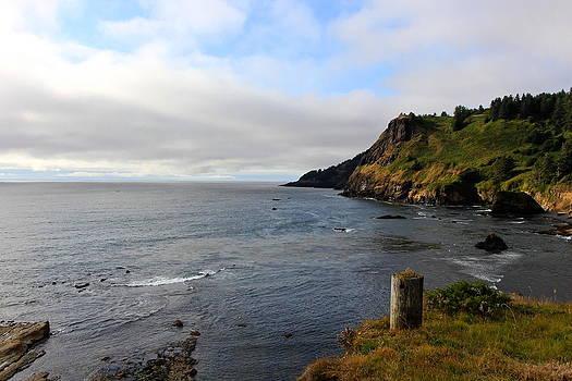 Oregon Coast by Tim Rice