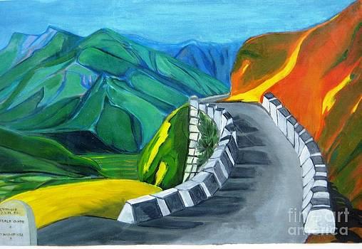 Duygu Kivanc Artwork For Sale Fairfax Va United States