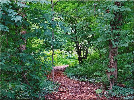 Path thru the woods by Mikki Cucuzzo