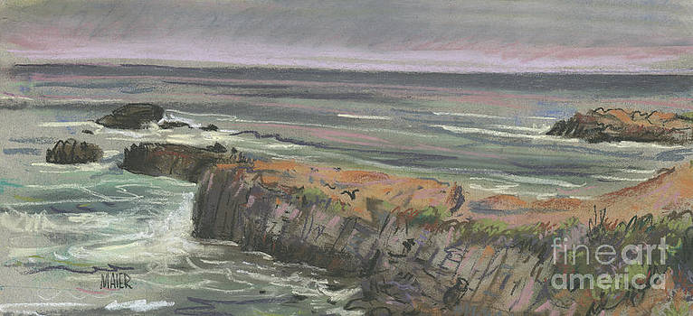 Pescadero Beach by Donald Maier