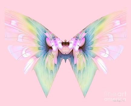 Pink Butterfly by Nan Engen