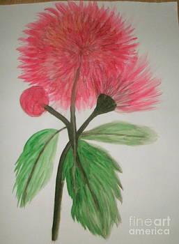 Pink by Ketina Winston