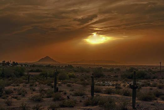 Tam Ryan - Piestewa Peak Sunset